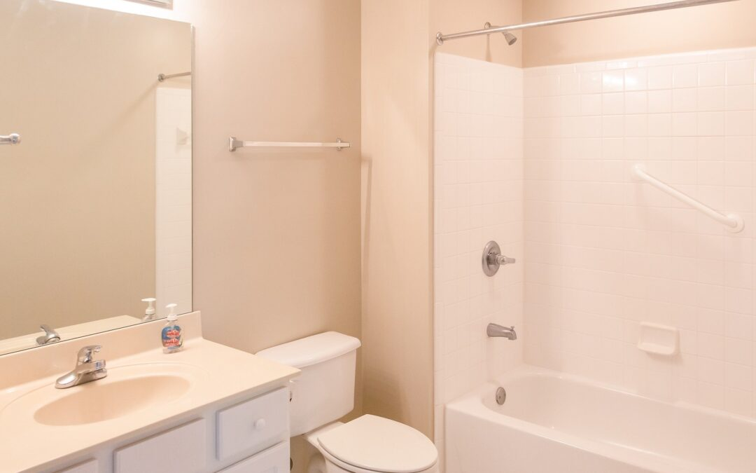 """It's Cleaner Than When I Found It"""": Setting Cleanliness Expectations with Tenants"""""""